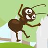 Heroic Ants