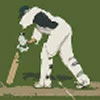 TMS Twenty20 Cricket